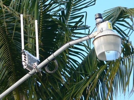 spygear on streetlamp hollywood FL 5-09