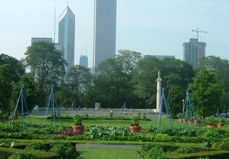 will allen community garden