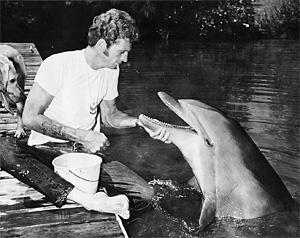 Ric and Flipper, 1964